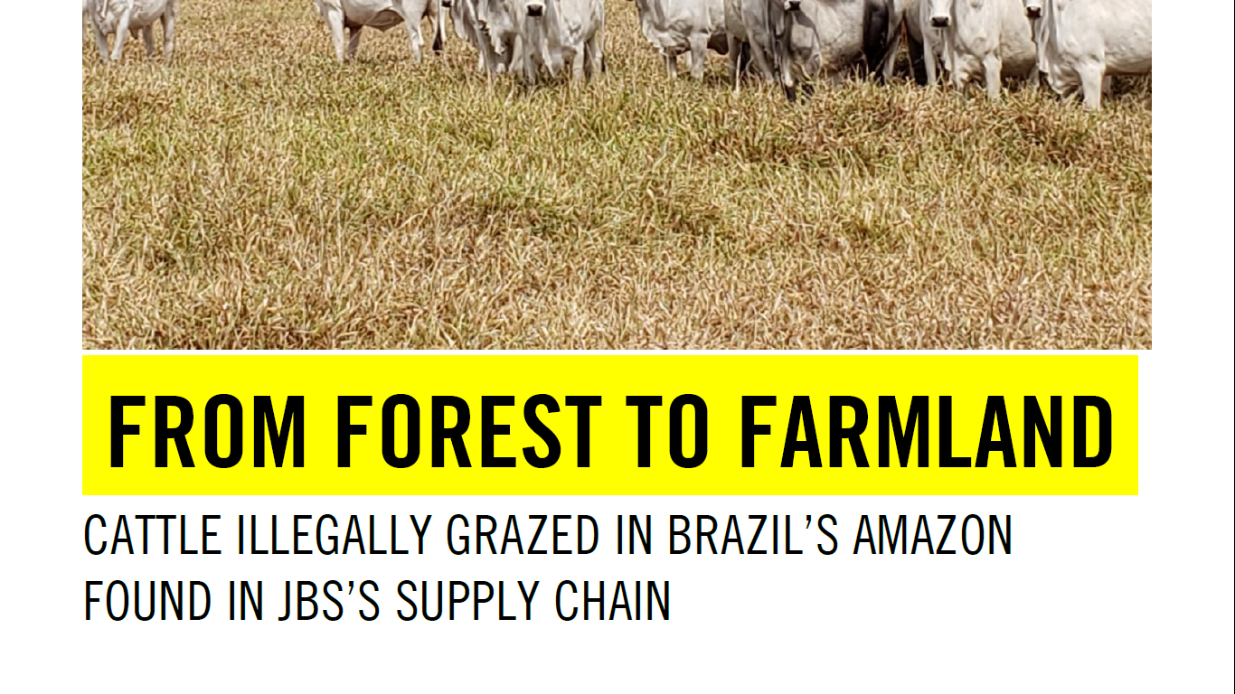 From Forest to Farmland